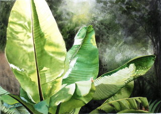 Doug Shoemaker Watercolors - Urban Landscapes / New Work 2012-2014 - backyard banana 2
