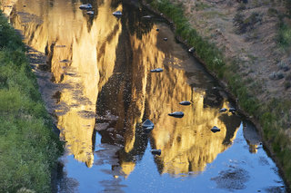 Brian Daly Photo - REAL WORLD - River-Reflection_FD