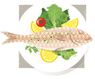 Mona Daly - Commercial Work - MonaDaly_Fish_food